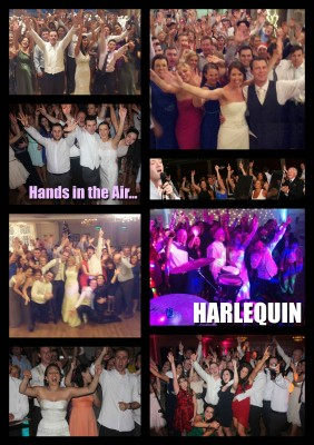 wedding bands ireland - harlequin
