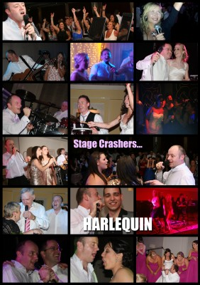 Wedding bands ireland - Stage Crashers Harlequin
